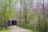 Cox Ford Bridge crosses Sugar Creek in Spring with Redbud blooming, Parke County, Indiana