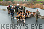 Harriers Hunt: The hounds at the Harriers Hunt Club Outing at Mountcollins on Tuesday ready to go.