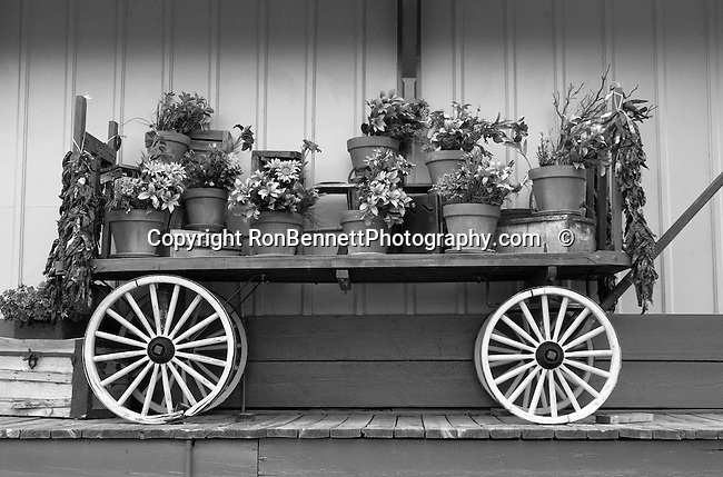 Buck-board Wagon Flowers Arizona, Wagon Flowers Arizona, buckboard, Bennett, Black and White Photographs, Black & White Photo's, B&W Photographs,  B&W, Black and White, Fine  Art Photography, photography, photo, creative, creative vision, vision, artist, photographs fulfill a creative vision of artist, artist, fine art photographers, Fine Art Photography by Ron Bennett, Fine Art, Bennett, Fine Art photography, Art Photography, Copyright RonBennettPhotography.com ©