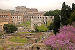 The Roman Forum, The Colosseum ,Rome, Italy,