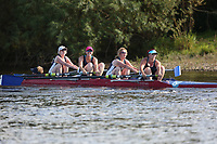 Race: 149  W.MasC/D.4+   Winner of Race: 115  vs [184]Bewdley RC - Bewdley KMS (C) <br /> <br /> Ross Regatta 2017 - Monday<br /> <br /> To purchase this photo, or to see pricing information for Prints and Downloads, click the blue 'Add to Cart' button at the top-right of the page.
