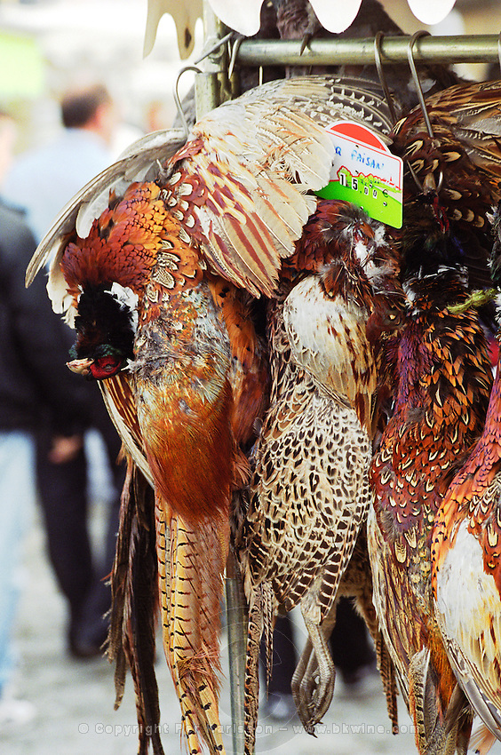 In a street food market in Bordeaux on the Quai des Chartrons, dead game birds for sale, pheasant (faisan), male cock and female hen hanging on hooks, Bordeaux Gironde Aquitaine France Europe   Bordeaux Gironde Aquitaine France Europe