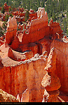 Hoodoos and Fins, Queen's Garden, Bryce Canyon National Park, Utah