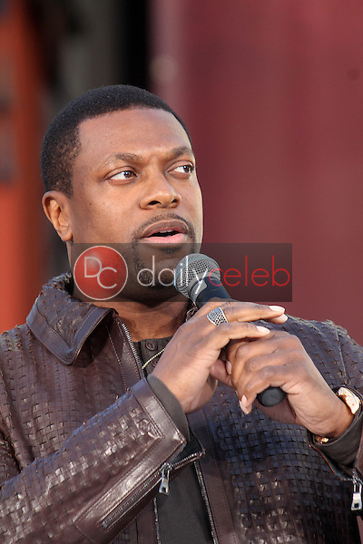 Chris Tucker<br /> at Michael Jackson Immortalized at Grauman's Chinese Theatre, Hollywood, CA 01-26-12<br /> David Edwards/DailyCeleb.com 818-249-4998