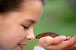 Young girl holding in her hands a rough skinned newt (taricha granulosa)  nose to nose