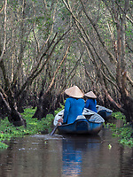 Forrest swamp in Chau Doc, Vietnam