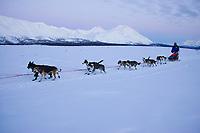 Bjornar Andersens team on the trail leaving Rainy Pass Chkpt 2006 Iditarod Alaska Range Rainy Pass Alaska