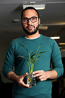 Harpreet Sareen displays on the plants used in his Cyborg Botany project in the Fluid Interfaces Group lab space at MIT's Media Lab in Cambridge, Massachusetts, USA, seen here on Tues., April 25, 2017. Sareen is a grad student and research assistant in the Fluid Interfaces Group, led by Pattie Maes. The project embeds electronics and sensors in living plants that can, among other possibilities, detect soil or water impurities. This plant can detect lead in soil or water.