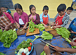 School children in Tuixcajchis, a small Mam-speaking Maya village in Comitancillo, Guatemala, learn about nutrition as they prepare and cook vegetables during class. The special program is sponsored by the Maya Mam Association for Investigation and Development (AMMID).
