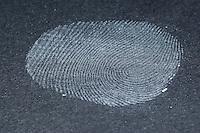 Fingerabdruck, Fingerabdrücke nehmen, 5. Schritt:  das durchsichtiges Klebeband wird mit dem durch Puder sichtbar gemachten Fingerabdruck auf eine schwarze Pappe geklebt, der Fingerabdruck kann nun gesammelt, gesichtet und vergleichen werden