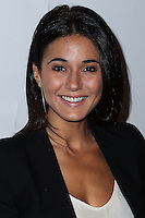 "WEST HOLLYWOOD, CA - NOVEMBER 13: Emmanuelle Chriqui at the ""Stand Up For Gus"" Benefit held at Bootsy Bellows on November 13, 2013 in West Hollywood, California. (Photo by Xavier Collin/Celebrity Monitor)"