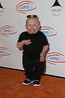 LOS ANGELES, CA - SEPTEMBER 21: Verne Troyer attends the Get Lucky for Lupus LA Celebrity Poker Tournament at Avalon on September 21, 2016 in Los Angeles, California. (Credit: Parisa Afsahi/MediaPunch)