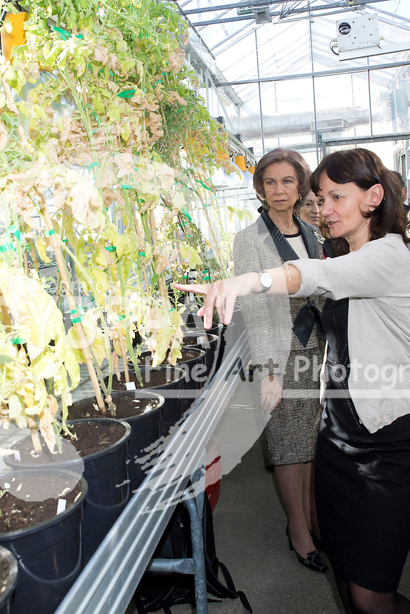 07.02.2013. Campus Cantoblanco. Madrid. Spain. Queen Sofia of Spain and Ana Mato (Minister of Health, Social Services and Equal Spain) visit the National Center for Biotechnology. In the image: Queen Sofia. (C) Ivan L. Naughty / DyD Fotografos//