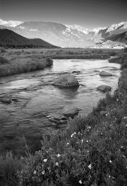 The Big Thompson River flows through Moraine Park in Rocky Mountain National Park in Summer in the early morning in Colorado.