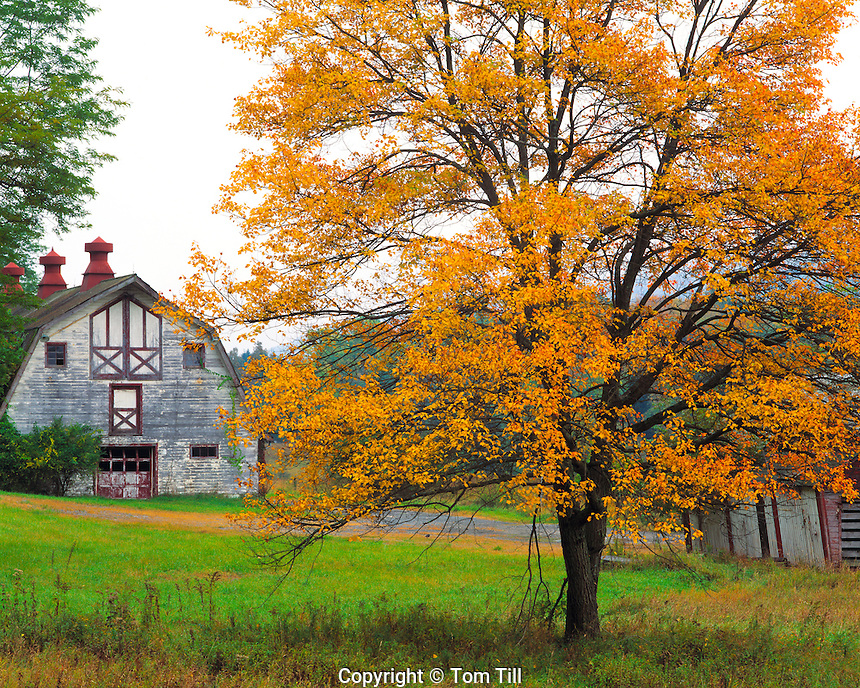 Old barn in autumn, Delaware Water Gap National Recreation Area, New Jersey
