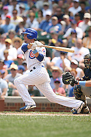 June 18th 2007:  Ryan Theriot of the Chicago Cubs during a game at Wrigley Field in Chicago, IL.  Photo by:  Mike Janes/Four Seam Images