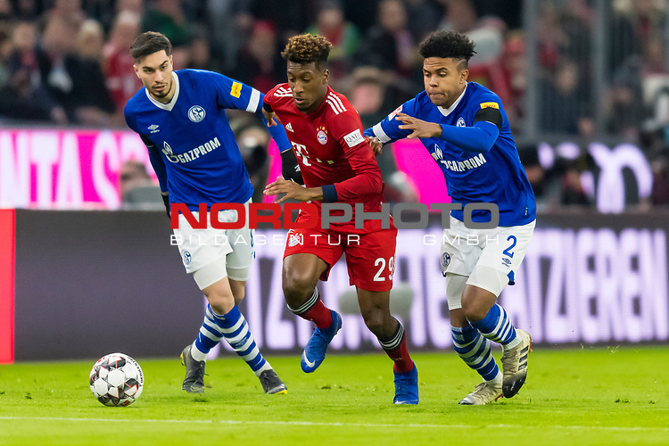 09.02.2019, Allianz Arena, Muenchen, GER, 1.FBL,  FC Bayern Muenchen vs. FC Schalke 04, DFL regulations prohibit any use of photographs as image sequences and/or quasi-video, im Bild Suat Serdar (Schalke #8) Kingsley Coman (FCB #29) Weston McKennie (Schalke #2) <br /> <br />  Foto &copy; nordphoto / Straubmeier