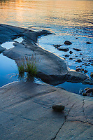 Grästuva på slät klipphäll vid Arholma i Stockholms skärgård