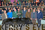 RESERVE: The reserve champion at the Christmas Fat Stock and Show sale at The Kingdom Mart Traleeon Monday was Liam O'Sullivan who was presented witrh the Reserve Champions Cup by Edward Kelliher (Kelliher Mills Clash), l-r: Philip Healy (manager), Ger Kelly (judge), Edward Kelliher (Sponsor), Liam O'Sullivan ( owner Ardfert), Paul Mulanney (Judge), Paul Lenihen (kellihers Mills Clash), Brendan Blackwell (Kingdom Mart,Tralee) and Maurice Brosnan (Buyer/Castleisland).