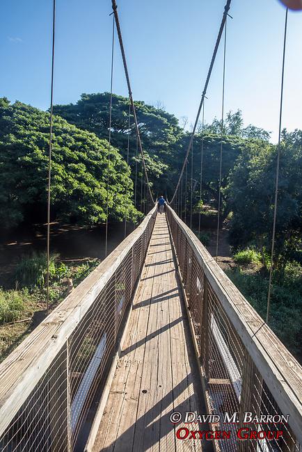 Adam On Bridge Over Menehune Ditch