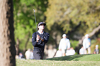 Bubba Watson (USA) on the 6th during the 4th round at the WGC Dell Technologies Matchplay championship, Austin Country Club, Austin, Texas, USA. 25/03/2017.<br /> Picture: Golffile | Fran Caffrey<br /> <br /> <br /> All photo usage must carry mandatory copyright credit (&copy; Golffile | Fran Caffrey)