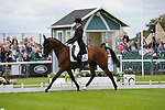 Stamford, Lincolnshire, United Kingdom, 5th September 2019, Katie Preston (GB) & Templar Justice during the Dressage Phase on Day 1 of the 2019 Land Rover Burghley Horse Trials, Credit: Jonathan Clarke/JPC Images