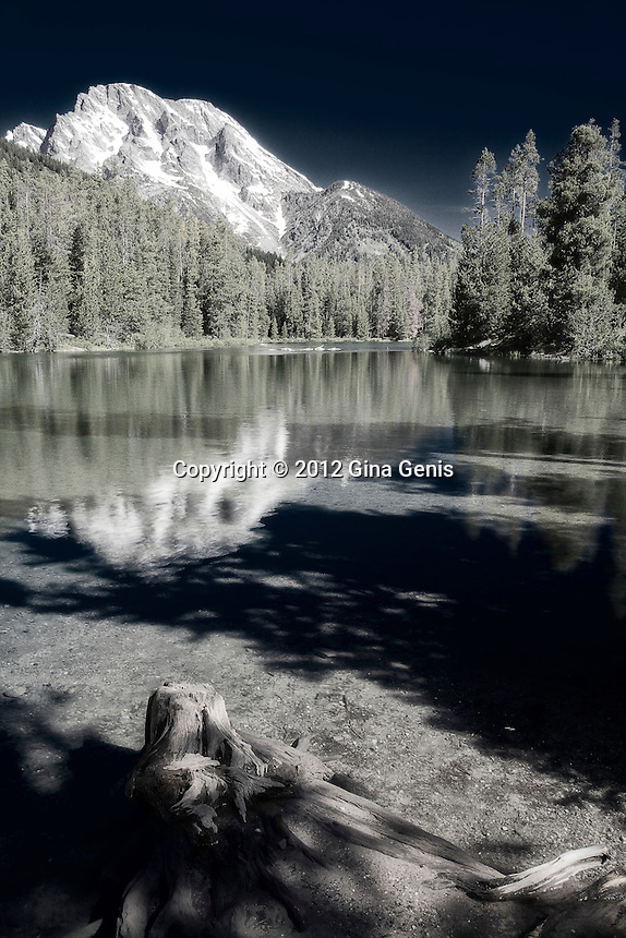 String Lake, Grand Tetons photographed by Gina Genis
