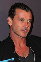 Gavin Rossdale<br />
