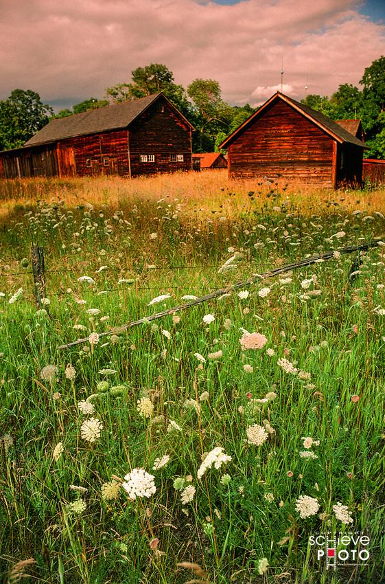 Old barns in Door County.