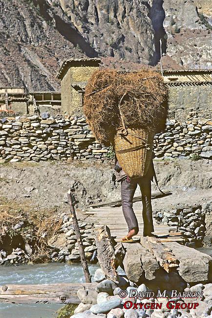 Man Carrying Grasses Along Footbridge