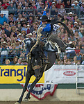 Rusty Wright rides in the Saddle Bronc Riding event during the Reno Rodeo on Sunday, June 23, 2019.