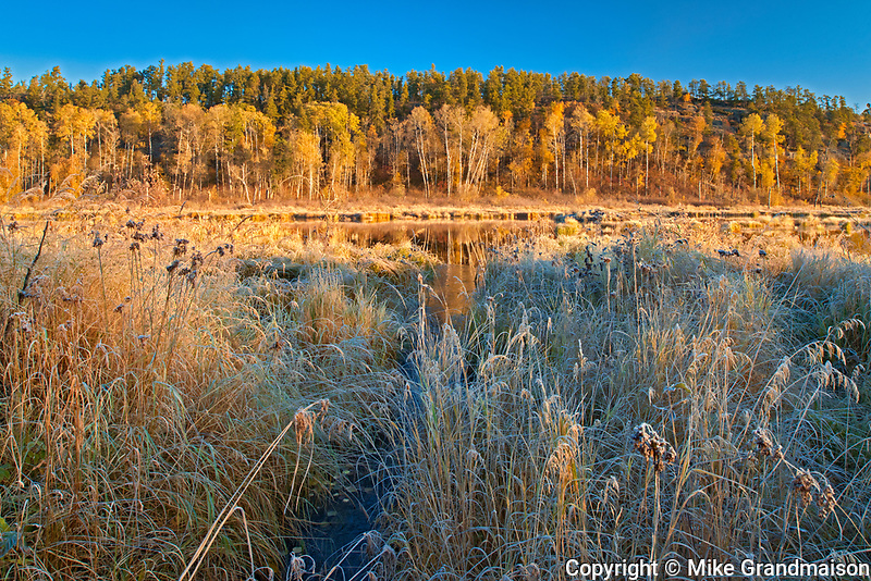Autumn colors in wetland<br />