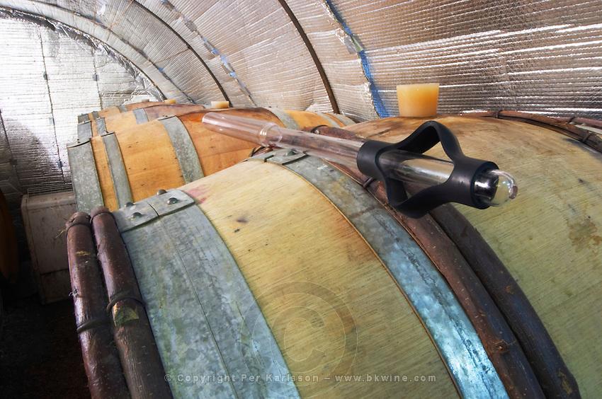 Domaine Le Conte des Floris, Caux. Pezenas region. Languedoc. Barrel cellar. Drawing a sample with a pipette. France. Europe.