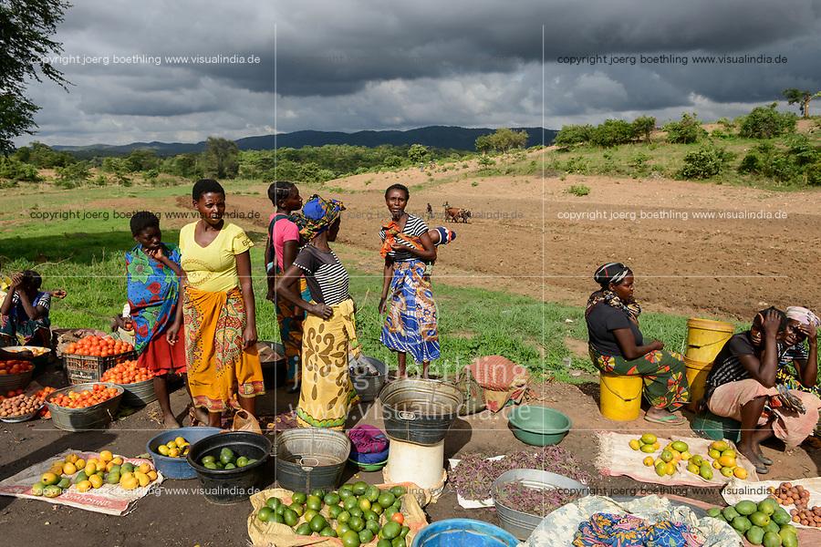 Zambia, Sinazongwe, rural market in village / SAMBIA, Sinazongwe Distrikt, laendlicher Markt an einer Strasse im Dorf