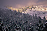Snoqualmie Pass sunset with light breaking onto snow covered trees and mountains Washington State USA