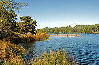 Late summer at Eel Lake in the William M. Tugman State Park, Oregon.