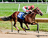 Mr. Viber winning at Delaware Park on 7/17/13