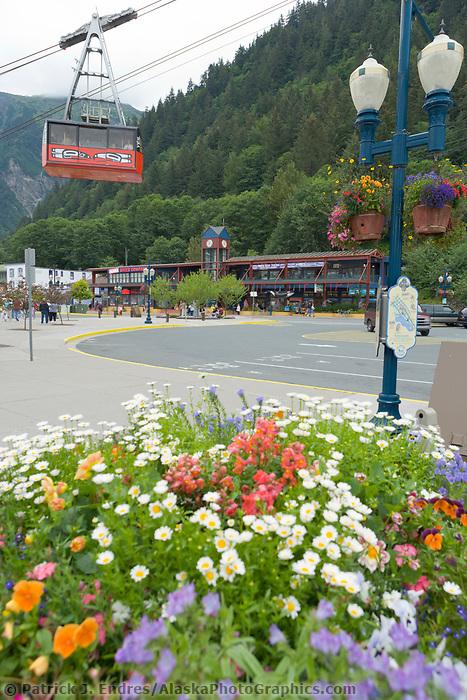 Mount Roberts tram, downtown Juneau, Alaska.