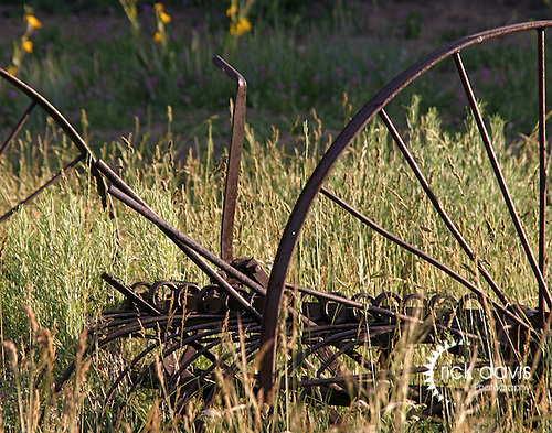 An old hay rake sits in a mountain meadow outside Meeker, Colorado.