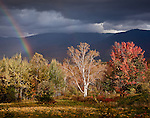 A rainbow and golden fall foliage with Mt LaFayette, White Mountains, NH, USA