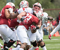 Stanford, CA - April15, 2017:  Casey Toohill (52)Trevor Speights (23) at Cagan Stadium.