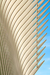 Detail of Santiago Calatrava's World Trade Center Transportation Hub