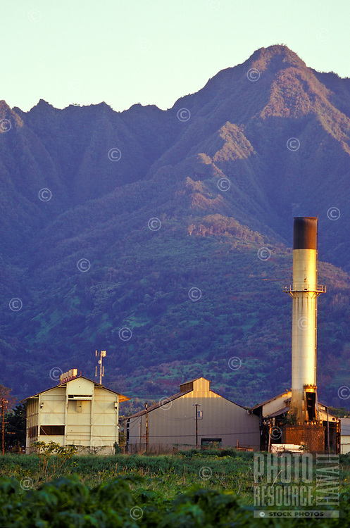 Waialua Sugar Mill with Mount Kaala in bakground at sunset