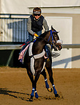 LOUISVILLE, KENTUCKY - APRIL 29: Restless Rider, trained by Kenny McPeek, exercises in preparation for the Kentucky Oaks at Churchill Downs in Louisville, Kentucky on April 29, 2019. John Voorhees/Eclipse Sportswire/CSM