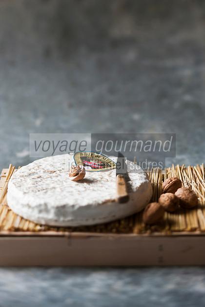 Europe/France/Ile-de-France/77/Seine-et-Marne/AOC Brie de Melun Médaille d'or 2010 de SAS Gratiot Père et fils - Stylisme : Valérie LHOMME