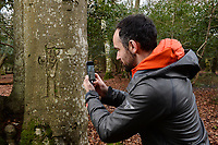 BNPS.co.uk (01202 558833)<br /> Pic: ZacharyCulpin/BNPS<br /> <br /> Pictured: Visitors to the New Forest are being encouraged to record graffiti.<br /> <br /> Fascinating ancient graffiti which was carved into the trees of the New Forest centuries ago is being formally recorded for the first time.Initials, dates, pictures, poems and royal marks which vary in size from 4ins to 2ft can be found throughout the national park in Hampshire.There are also various examples on display of concentric circles, known as 'witches marks', which were carved to ward off evil spirits.In total, hundreds of examples of 'tree graffiti' are being documented in a new database set up by the New Forest National Park Authority.