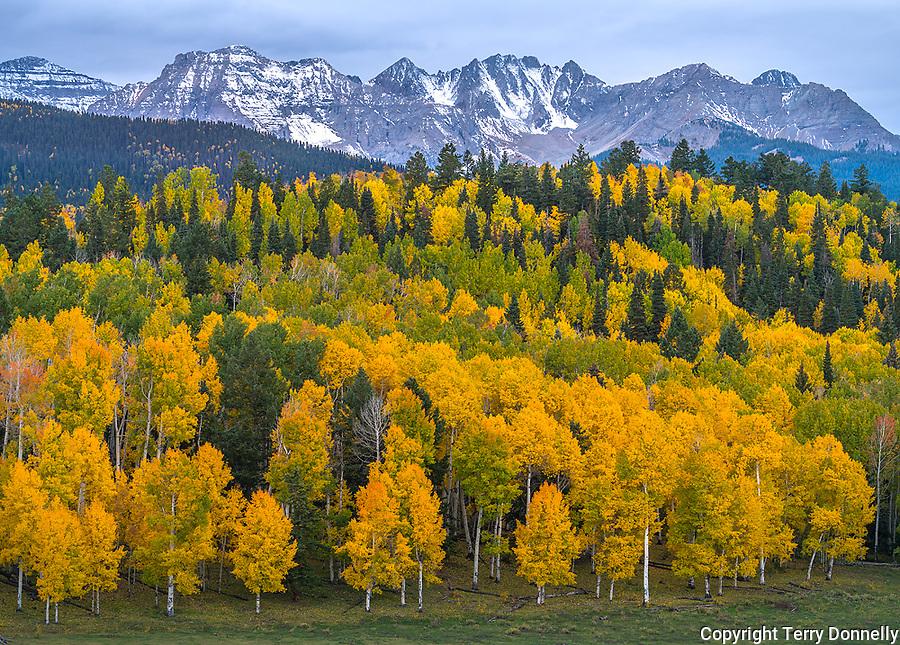 Uncompahgre National Forest, Colorado: Storm clouds the Sneffels range, autumn