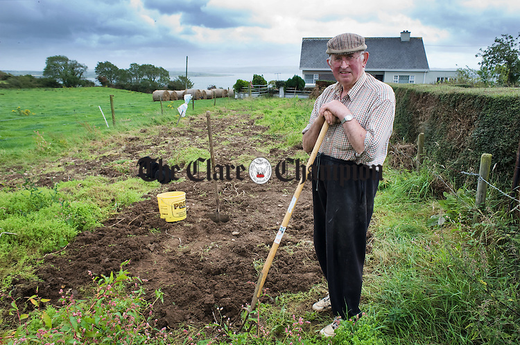 TV Malone digging potatoes in his garden at Burrane. Photograph by John Kelly.