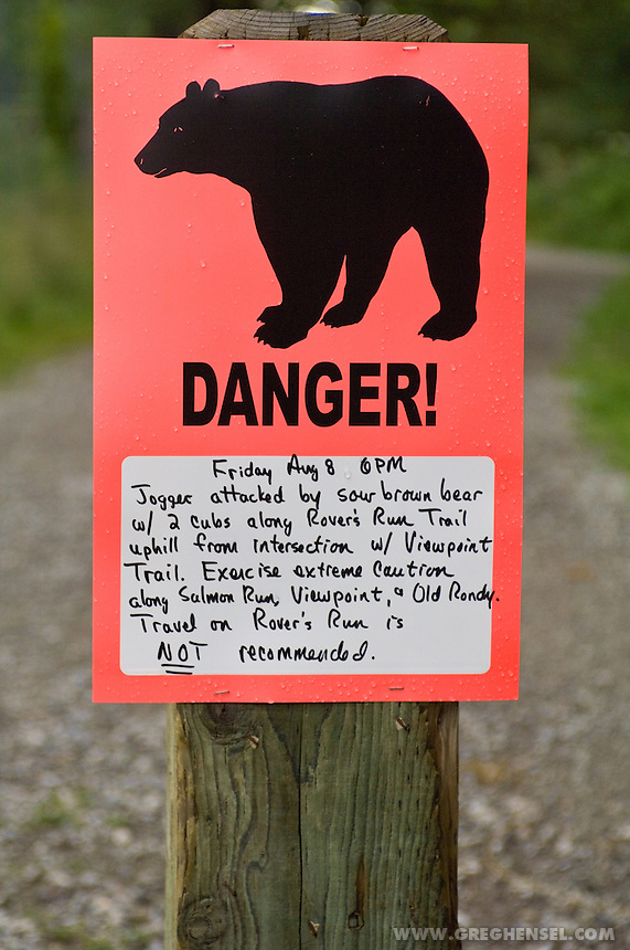 Sign warning visitors of recent bear attacks on a Anchorage hiking trail.. Summer in Southcentral Alaska.