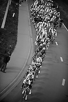 De Ronde van Vlaanderen 2012..peloton on the move